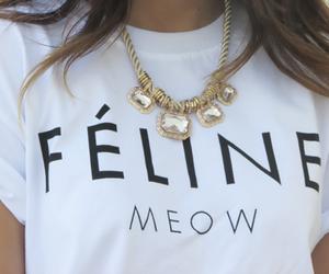 fashion, style, and feline image