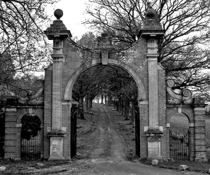gate, black and white, and Darkness image