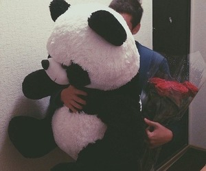 love, panda, and boy image