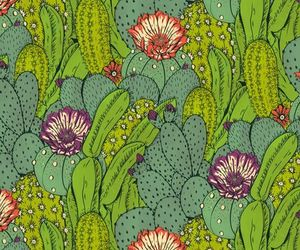 cactus, pattern, and green image