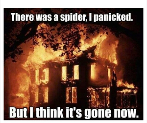 funny, fire, and lol image