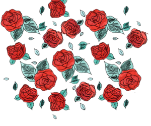 flowers, rose, and overlay image