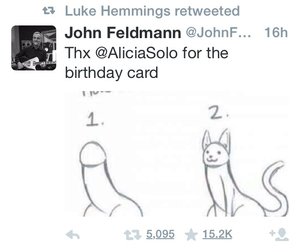 cat, draw, and twitter image