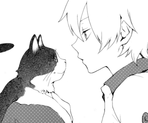 cat, manga, and anime image