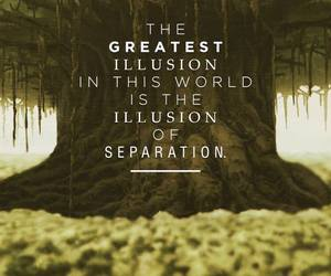 quote, illusion, and tree image
