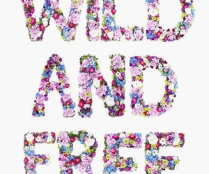 free, wild, and flowers image