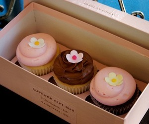 cupcakes, gift box, and pink frosting image