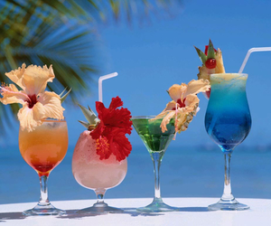 beach, cocktail, and holidays image