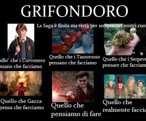 grifondoro and meme hp image