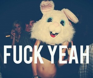 bunny, party on, and summer nights image