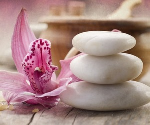 flowers, pink, and stones image