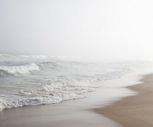 beach, water, and nature image