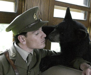 bear and michael fassbender image