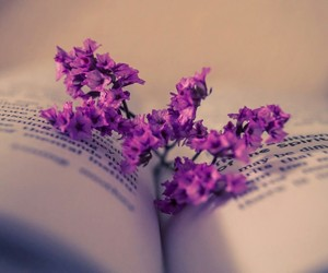 flowers, book, and purple image
