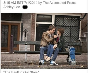 tfios, amsterdam, and bench image