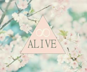 alive, flowers, and pink image