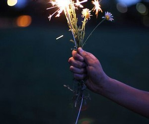 flowers, light, and fireworks image