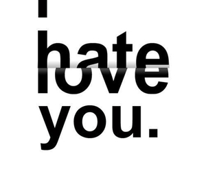 love, hate, and you image