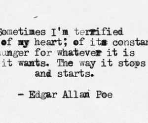 afraid, fear, and feelings image