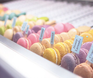 food, macarons, and pastel image