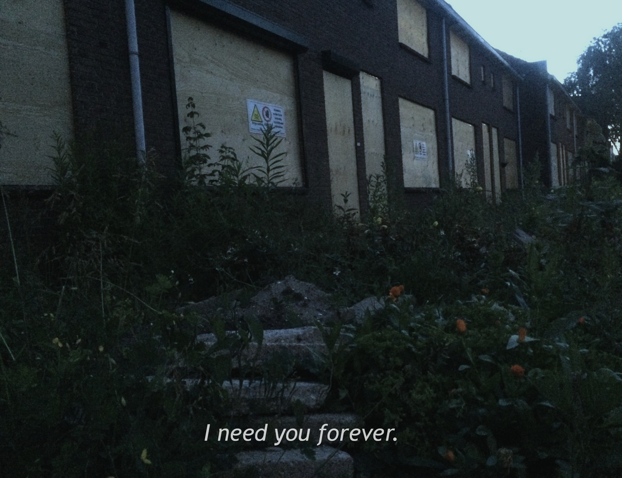 I Need You Forever Shared By Addicted On We Heart It