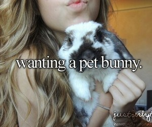 just girly things and bunny image