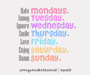 hate, monday, and saturday image