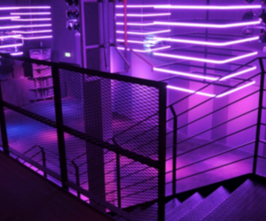 neon, purple, and light image