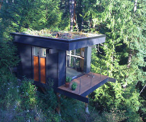 house, forest, and architecture image