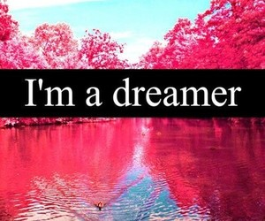 dreamer, quote, and pink image