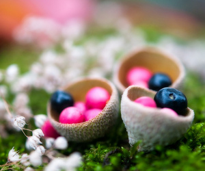 basket, blueberry, and fairy image