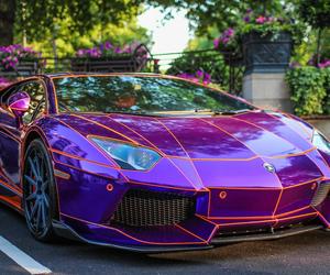 car, Lamborghini, and purple image