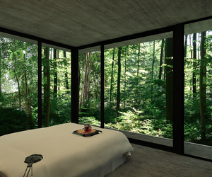 bedroom, forest, and nature image