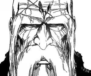bleach and manga image