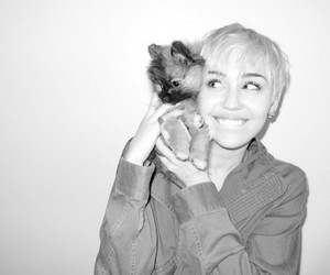 miley cyrus, miley, and dog image