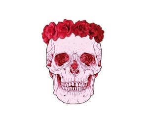 overlay, red, and skull image