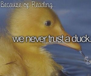 duck and the infernal devices image