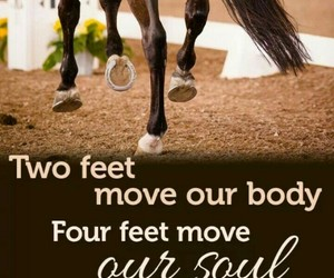 horse, feet, and quote image
