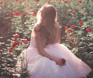 girl, rose, and dress image