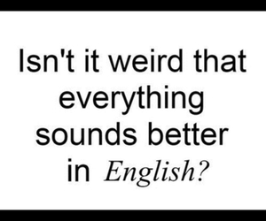 quote, english, and funny image
