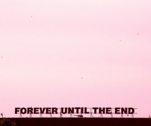 forever, pink, and quotes image