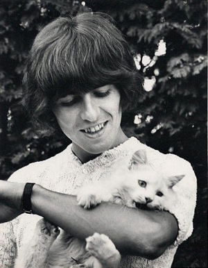 george harrison, cat, and the beatles image