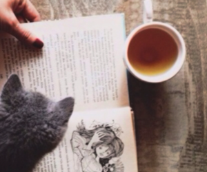 book, cat, and grunge image