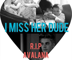 miss, miss her, and avalana image