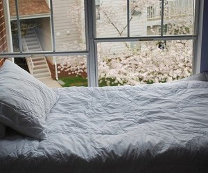 bed, window, and bedroom image
