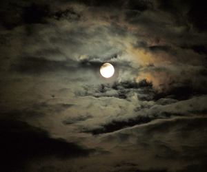 cheia, fullmoon, and nature image