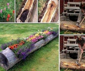 flowers, diy, and garden image