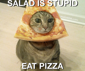 funny, grunge, and pizza image