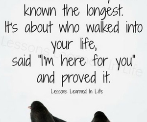 quotes, friendship, and life image