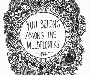 flowers, quote, and wildflowers image